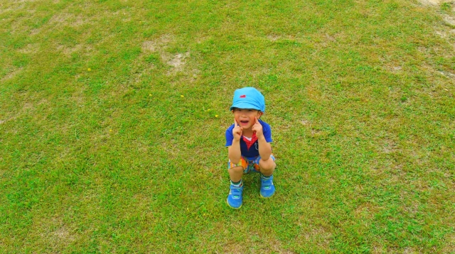 芝生にいる男の子写真