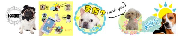 イヌと猫LINEスタンプ写真